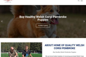 Buyhealthywelshipembrokepuppies.com Delivery Scam Review